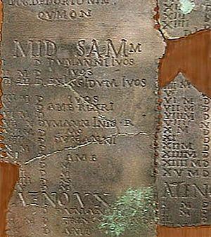 details of mid Samonias
