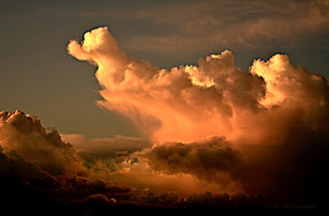 20090619211132_duck-cloud