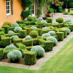 http://www.housetohome. co.uk/garden/picture/ box-parterre-garden