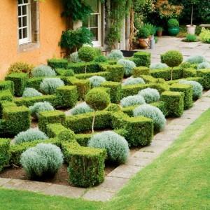 http://www.housetohome. co.uk/garden/picture/ box-parterre-garden