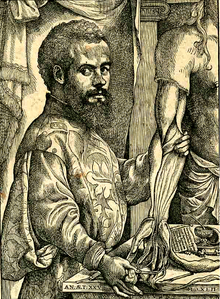 Portrait of Vesalius from his De humani corporis fabrica. Attributed to Jan van Calcar (circa 1499–1546/1550) - Page xii of De humani corporis fabrica (1534 edition), showing portrait of Andreas Vesalius. Original scan of page cropped to show portrait alone, contrasted slightly to 70 in Microsoft Photo Editor. The original book from which the scan arises is a copy of the 1543 edition stored in the collection of the U.S. National Library of Medicine, a division of the National Institutes of Health (NIH) - Public Domain