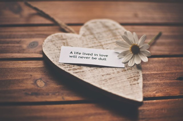 177050__feelings-love-romance-life-recognition-speech-daisy-heart_p.jpg