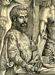 441px-Vesalius_Portrait_pg_xii_-_c