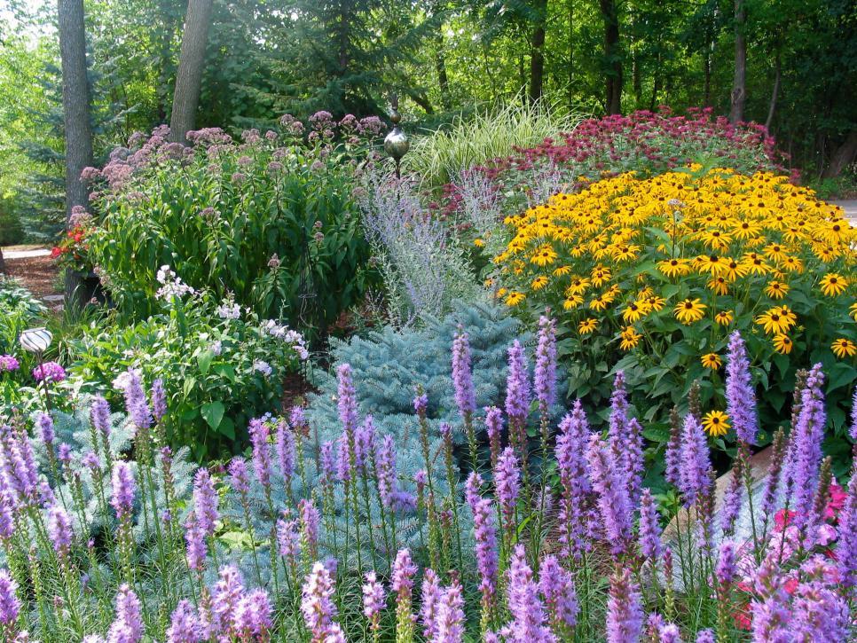 HGTV2501174 Gardens Rms_perennials Minnesota Triciaf_s4x3.rend.hgtvcom.